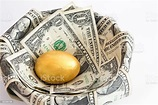 Finance Your Business With Your Retirement Nest Egg